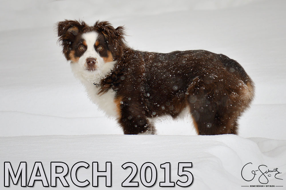 Looking back at February and forward into March 2015. My monthly update for March (with a bit of foreshadowing to a new minimalist lifestyle perhaps?)