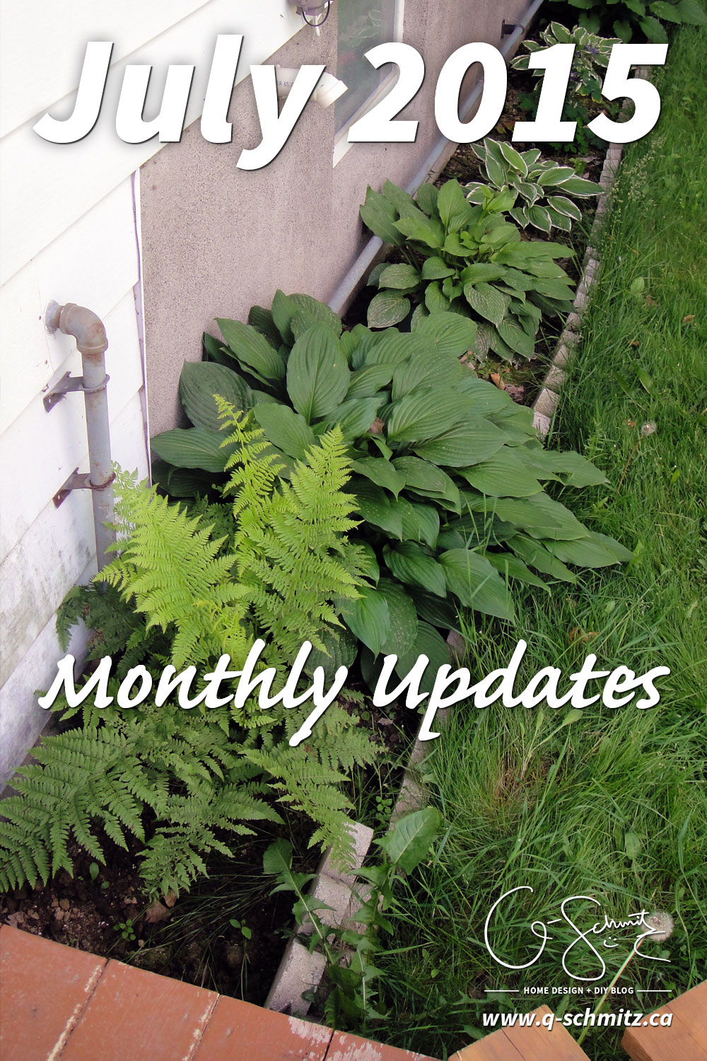 Is July a crazy-busy month for you too? I'm not sure August will be any better, but it seems like this summer is just flying by, even though it just barely started! Check out my monthly updates for July 2015.