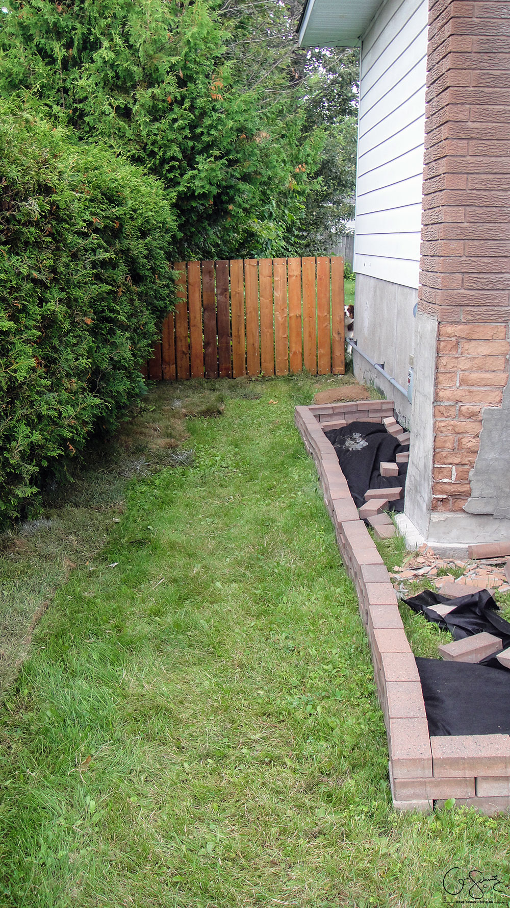 starting the side yard landscaping madness u0026 method