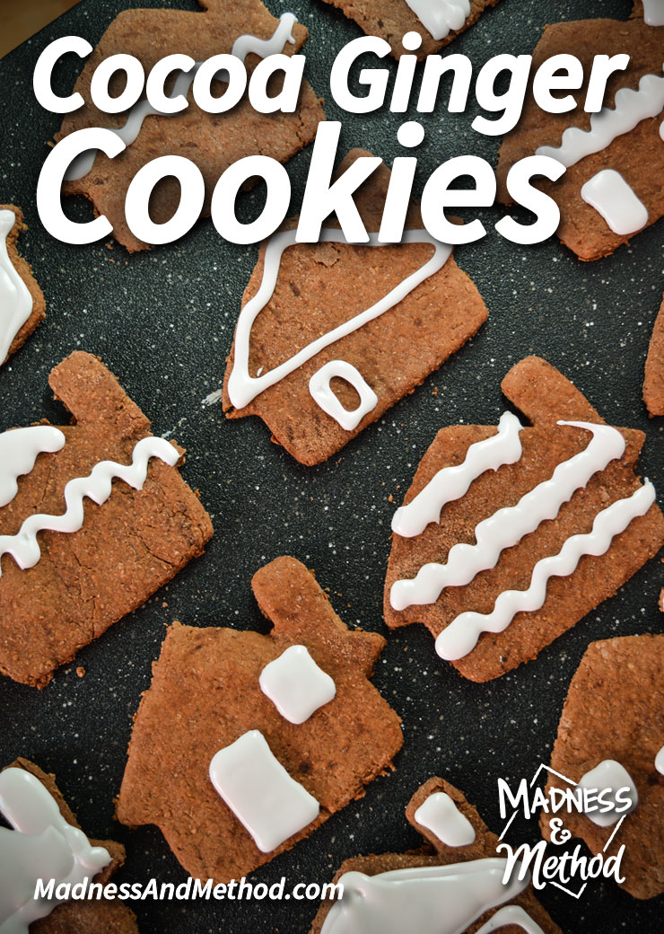 cocoa-ginger-cookies-pinterest