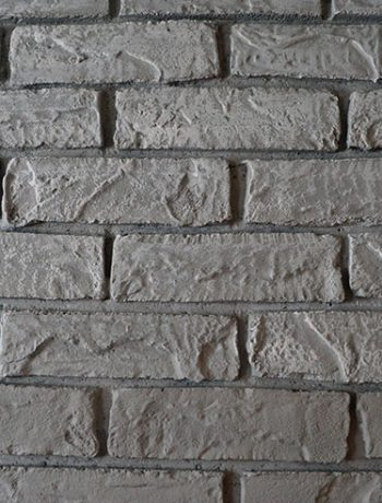 Have you ever dry brushed anything? I decided to dry brush bricks for our fireplace makeover, and I love how the bumps and ridges stand out!