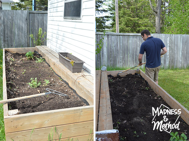 raised-garden-veggie-placement-03