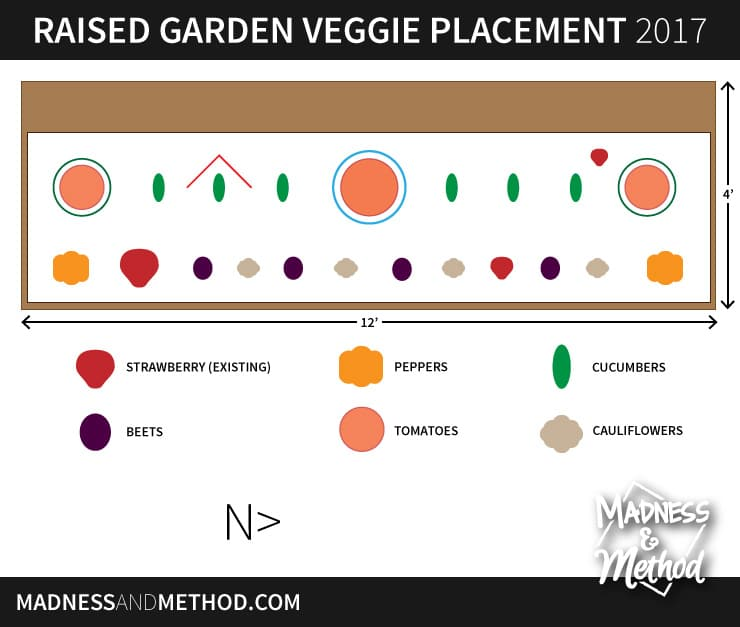 raised-garden-veggie-placement-diagram