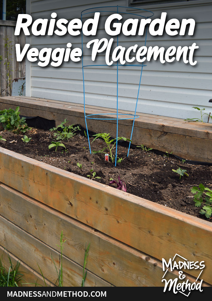 raised-garden-veggie-placement-pinterest