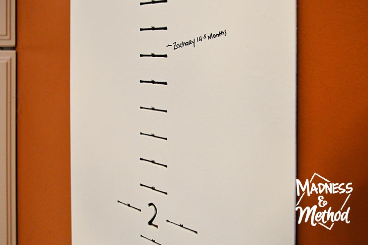 growth chart with zacharys measurements