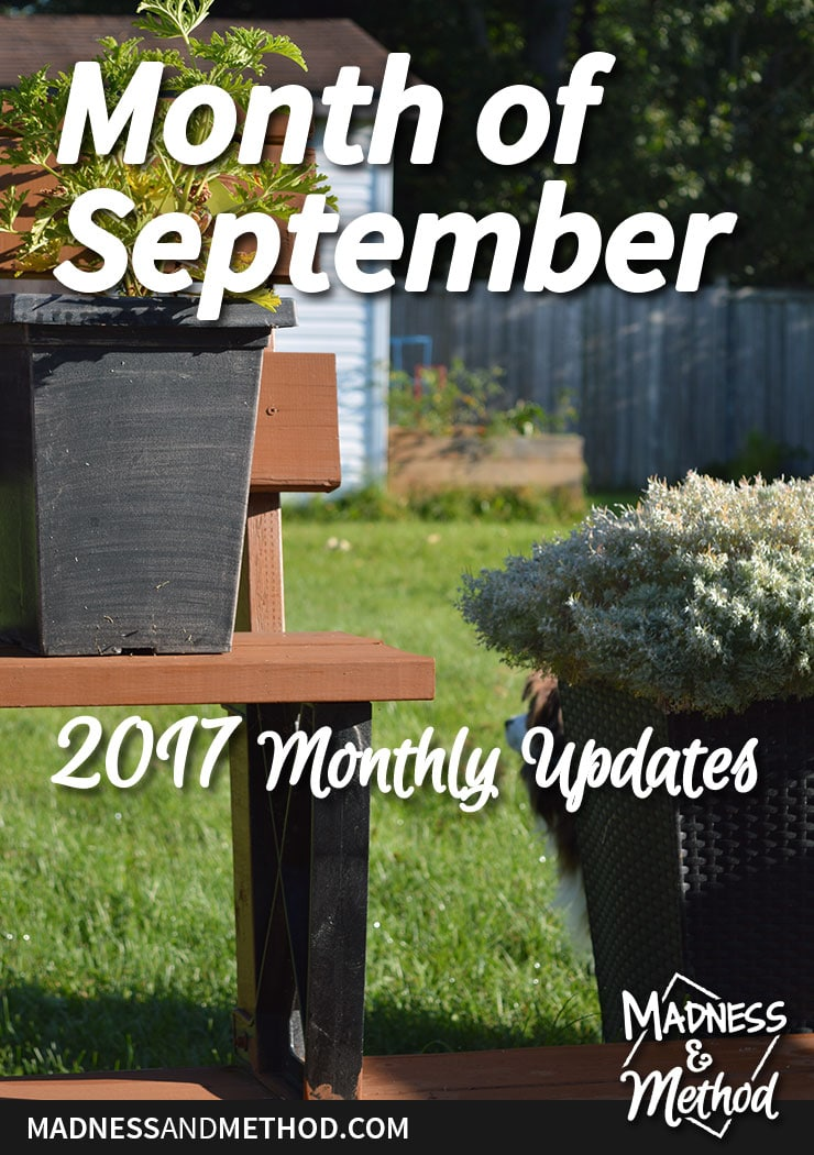 month of september graphic