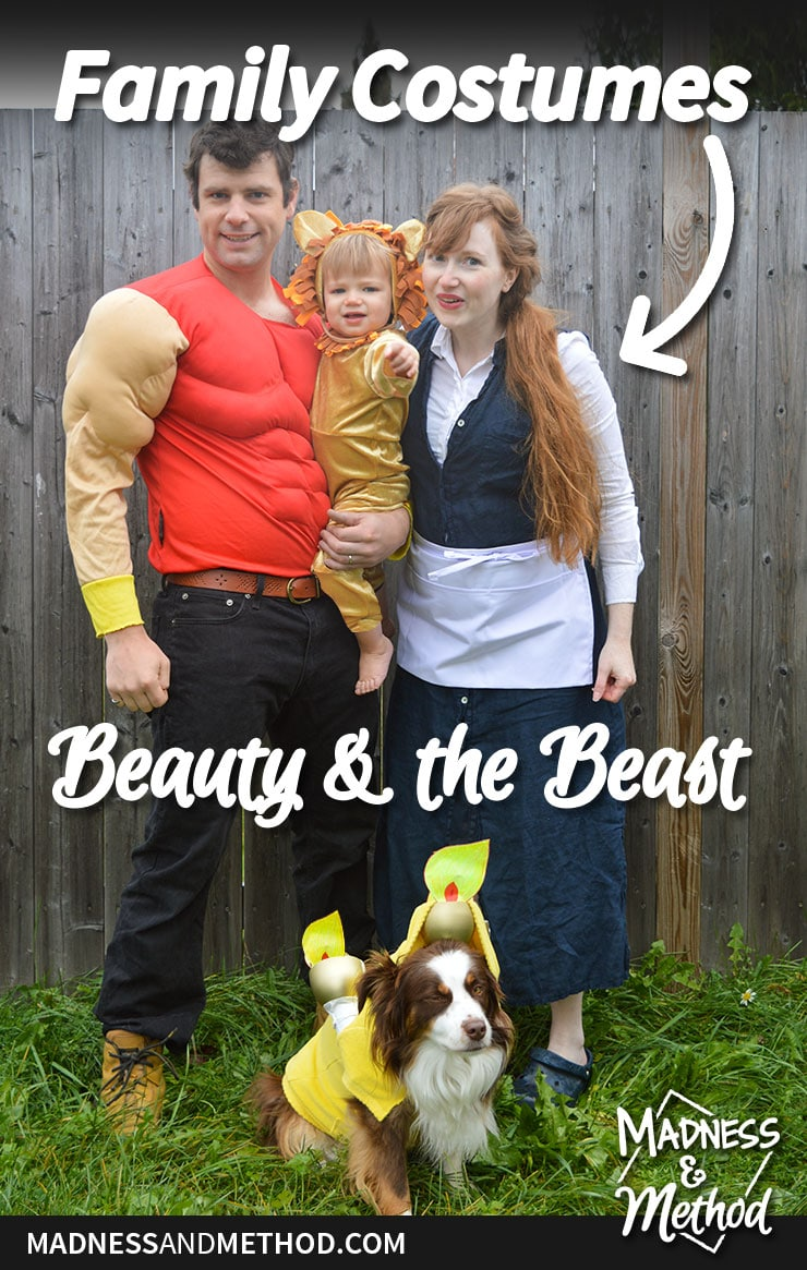 family beauty and the beast costumes graphic