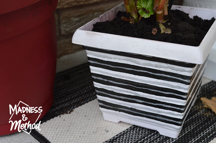black and white diy planter