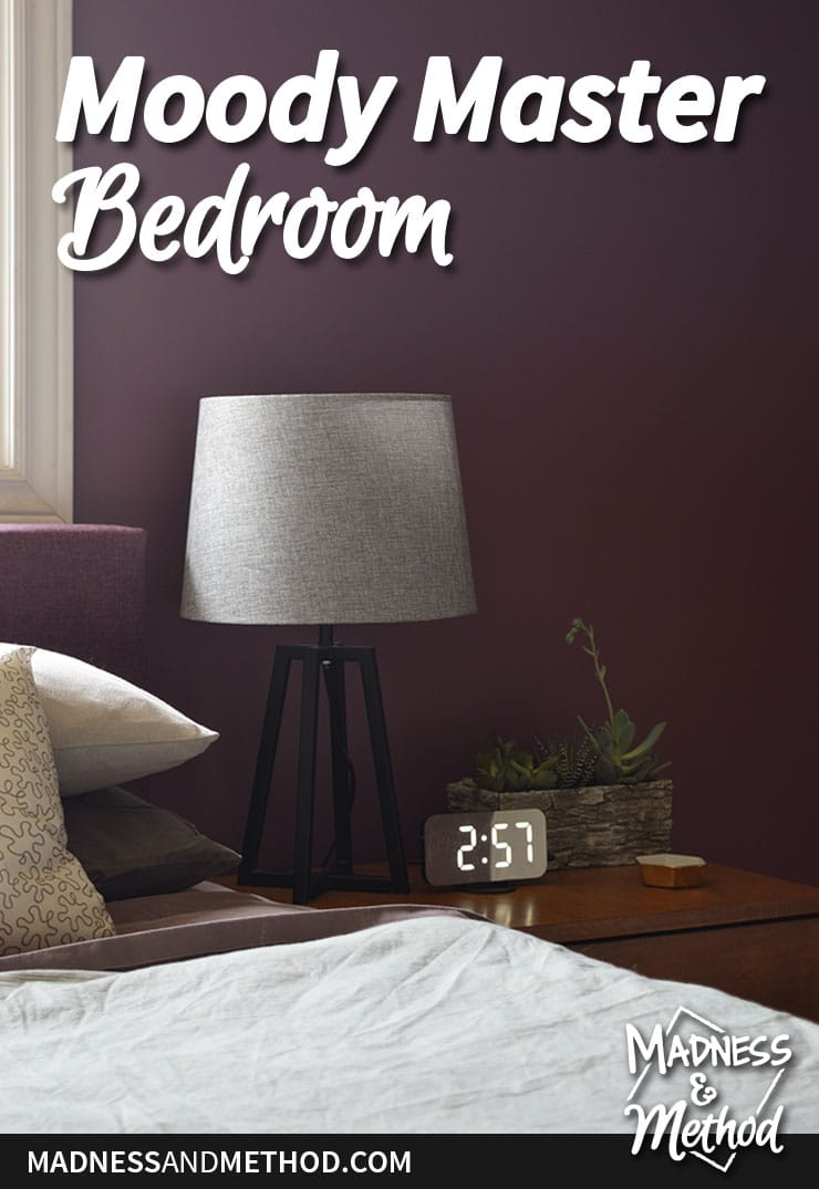 moody master bedroom reveal photo