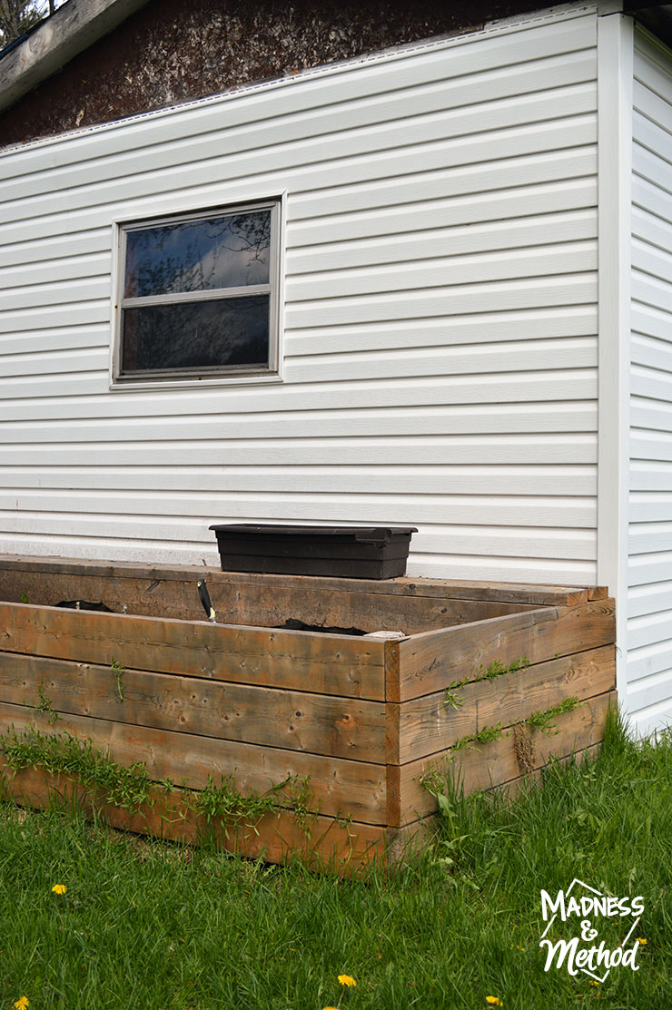 raised garden bed next to shed