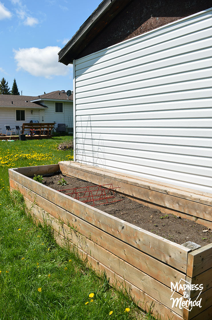 raised garden beside shed