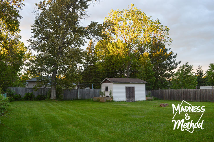 backyard with shed