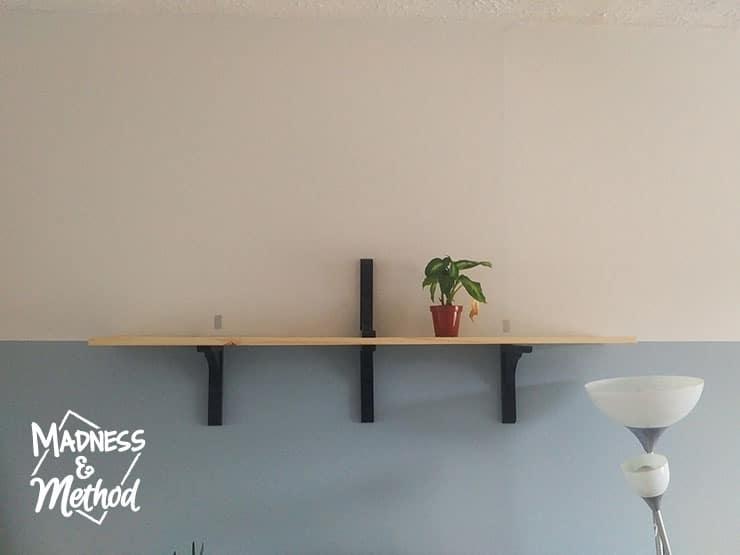 deciding shelf height