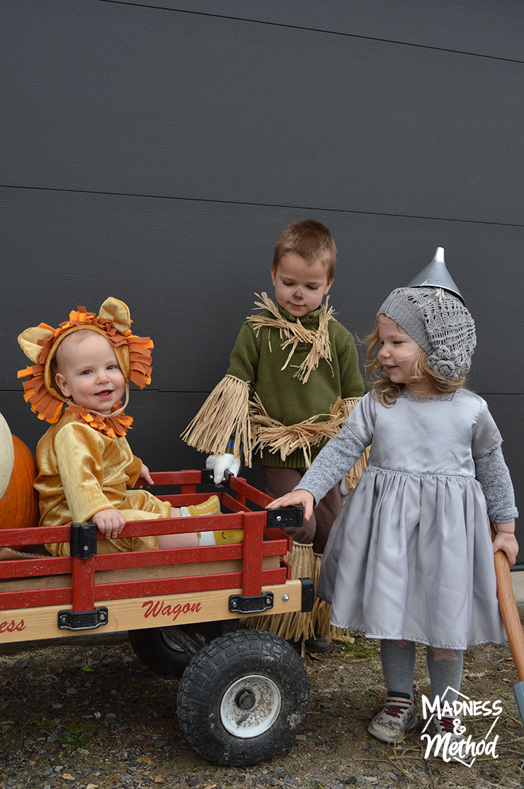 wizard of oz kid costumes