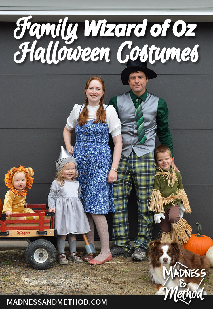 wizard of oz family costumes