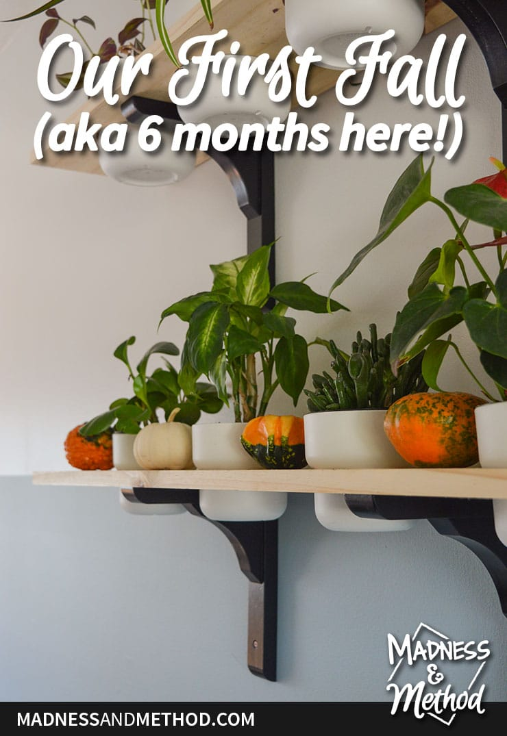 6 month home tour
