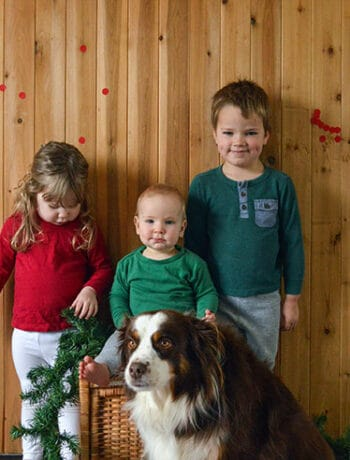 kids christmas photo