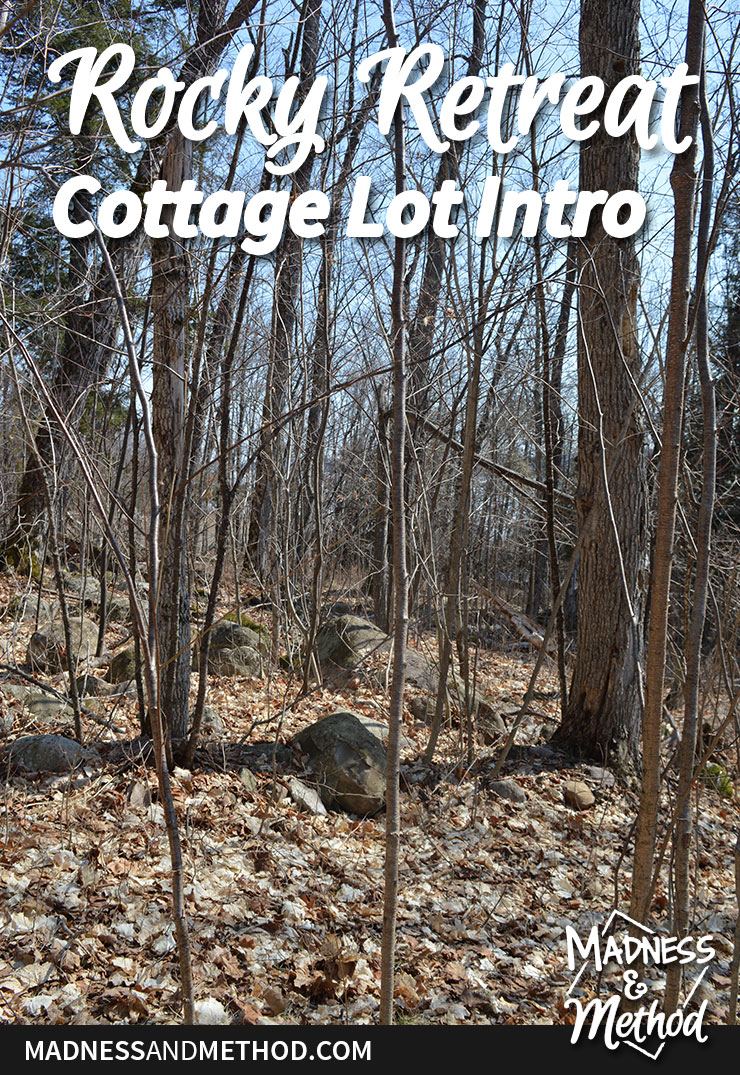 rocky retreat cottage lot intro