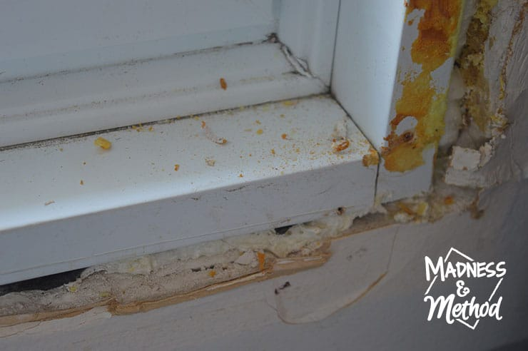 window frame and drywall