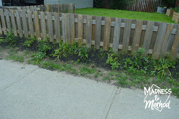 fence garden with weeds