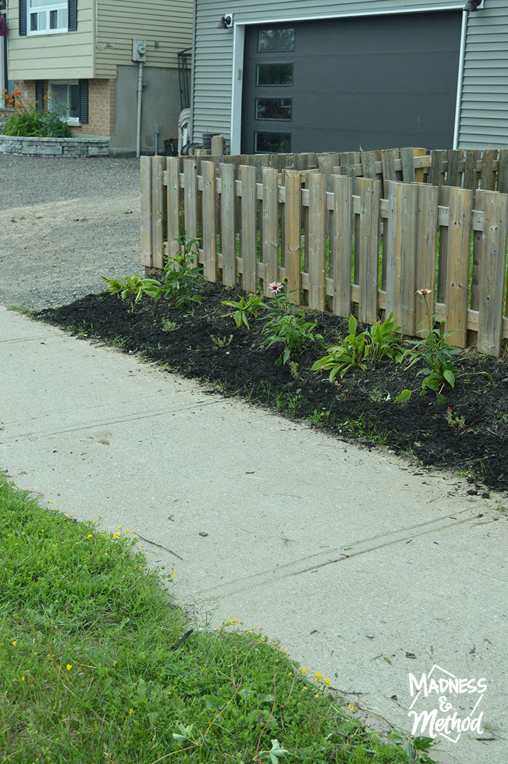 landscaping along sidewalk and fence