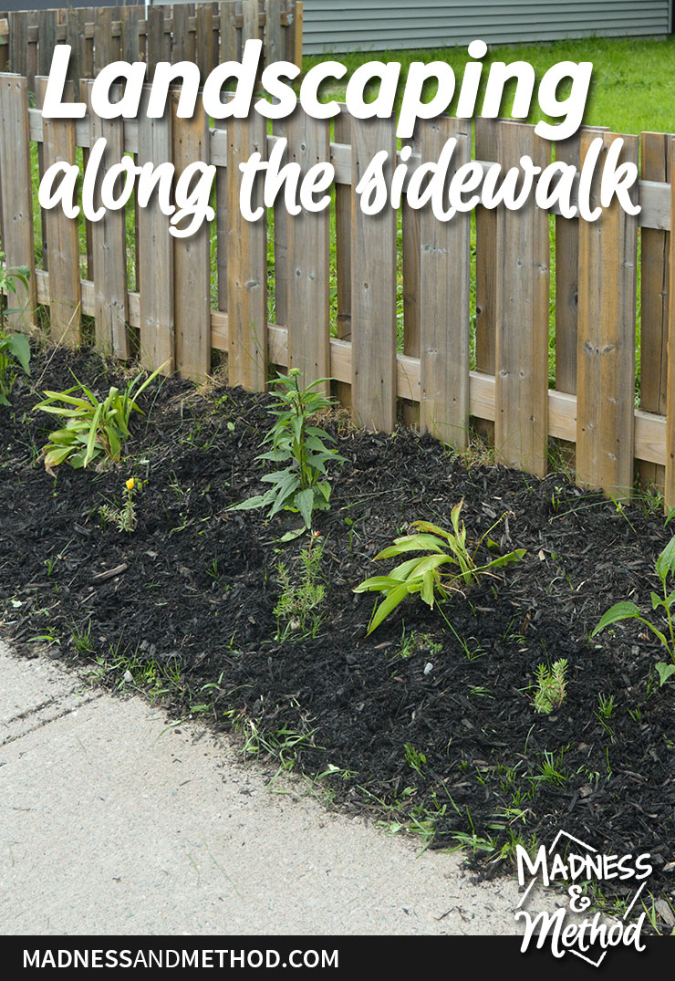 landscaping along sidewalk and fence graphic
